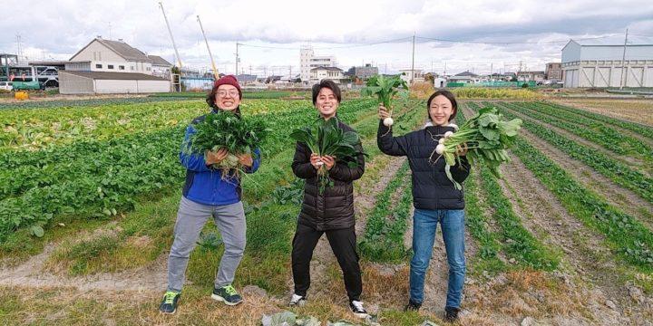 ECヴィレッジ 国内留学 農業体験 アクティビティー 泉佐野